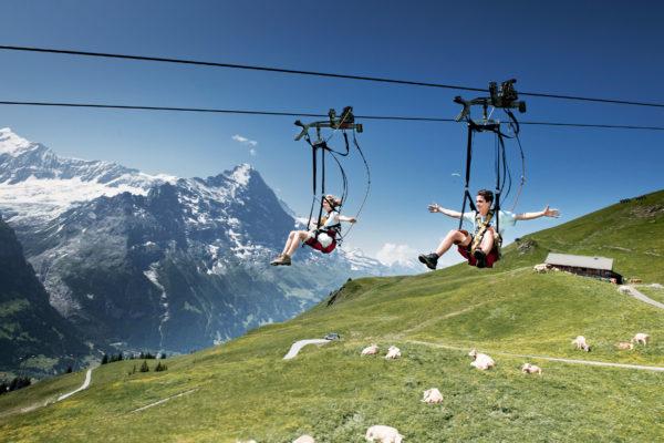 Neubau First Flieger und First Glider, First, Grindelwald